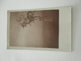 CPA CARTE PHOTO ARTISTIQUE 1920 FLOU ARTISTIQUE - Photographs