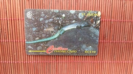 Phonecard St Lucia Animal  Number 99CSLA Used Only 30.000 MAde Rare - St. Lucia