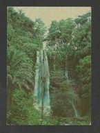 SÃO TOMÉ E PRINCIPE 1960 Years Postcard EX PORTUGUESE AFRICA AFRIKA AFRIQUE - Sao Tome Et Principe