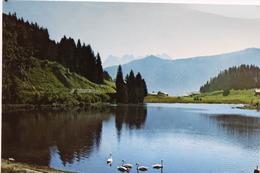 Lac De Morgins Dent Du Midi - VS Valais