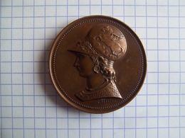 Médaille Athena Ecole Nationale De Dessin Jeunes Filles Desaide 1885 - France