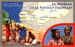 Format Cp Publicitaire Colonies Françaises Sénégal Et Soudan Dakar Saldé ... Produits Du Lion Noir Cirage Texte Au Dos - Publicidad