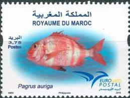 MAROC MOROCCO FAUNA FISHES MARINA PAGRUS AURIGA EUROMED POSTAL FAUNE MARINE 2016 - Morocco (1956-...)
