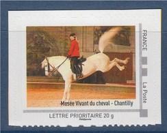 = Musée Vivant Du Cheval - Chantilly, La Picardie, TVP LP Neuf Issu D'un Collector Cadre Philaposte, - France