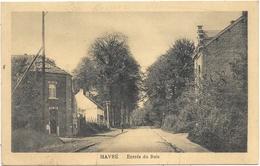 Havré NA10: Entrée Du Bois 1920 - Mons