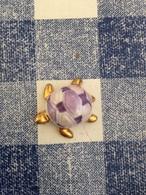 Feve Dorée Tortue Violette - Animals