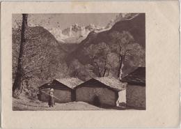 Herbst Im Bergell - Automne Dans La Vallee De Bergell - Photo: Feuerstein - GR Grisons