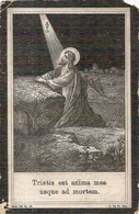 DP.ZUSTER MARIA LUDOBICA ( MARIA FARASYN) ° PIITHEM 1860 - + SINT JOORIS-TEN-DISTEL 1911 - Religion & Esotericism