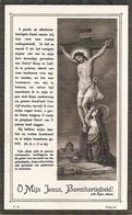DP.PETRUS DE GROOTE ° OEDELEM 1841 - + KORTRIJK 1918 - Religion & Esotericism