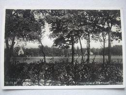 P51 Ansichtkaart Laren - Sanatorium Julianaoord - Laren (NH)