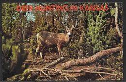 Deer Hunting In Kansas, Unused - United States