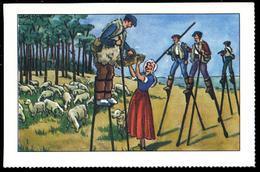 Image Bon-point Folklore Province Costumes LANDES DAX TARTAS SAINT SEVER MONT DE MARSAN échasses Berger Landais Mouton - Trade Cards