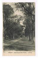 CPA (49) Cholet. Sanatorium Du Bois Grolleau. L'Avenue (245) - Cholet