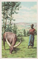 RUANDA URUNDI - Ruanda-Urundi