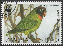 Zambia SG755 1996 Endangered Species. Birds 300k Good/fine Used [37/30804/2D] - Zambia (1965-...)