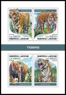 SIERRA LEONE 2018 MNH** Tigers Tiger Tigres M/S - OFFICIAL ISSUE - DH1819 - Raubkatzen