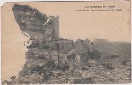 12 Peyrelade  Ruines Du Chateau - France