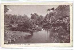 1 Postcard Gerona El Rio Segre En Llivia - Gerona