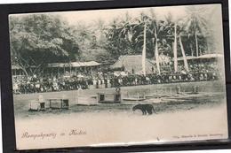 Netherlands Indies RARE CARD Rampokpartij Kediri Tiger ± 1910   (ni6-36) - Indonésie