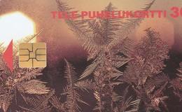 WINTER 1996 Luxe - Noel