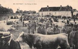 21 - COTE D'OR / Rouvray - 218626 - Le Champ De Foire - Beau Cliché Animé - Autres Communes