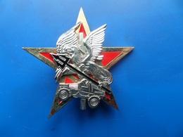 Insigne A Identifier , Operation Trident   , Insigne , Insigne Trident , Sheli - France