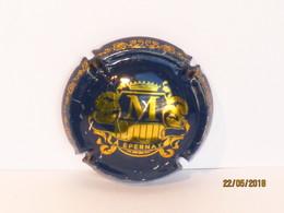 Capsules Ou Plaques De Muselet  CHAMPAGNE LEON LAUNOIS   ÉPERNAY - Collections