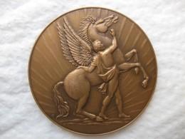 Medaille Armée De L Air , Securité Des Vols Attribué Au Sergent Chef Masduraud 1966 - Militaria