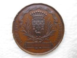 Médaille Napoléon III , Exposition De Toulouse 1865 , Par Oudine - Unclassified