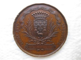 Médaille Napoléon III , Exposition De Toulouse 1865 , Par Oudine - France