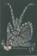 Matériaux -  Peinture Sur Carte Tissée - Oiseau Lyre  - EditionColin Massé Perpignan - Ansichtskarten