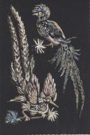 Matériaux -  Peinture Sur Carte Tissée - 2 Oiseaux Lyre  - EditionColin Massé Perpignan - Ansichtskarten