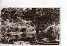 Postcard - The Arboretum, Ipswich - Unused Never Posted Very Good - Postcards