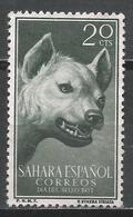 Spanish Sahara 1957. Scott #88 (M) Animal, Stripped Hyena * - Sahara Espagnol