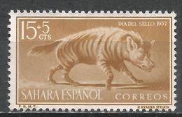 Spanish Sahara 1957. Scott #B44 (M) Animal, Stripped Hyena * - Sahara Espagnol