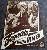 "Altes IFB-Filmprogramm - SOPHIA LOREN In ""Begierde Unter Ulmen"" Mit Burl Ives, Anthony Perkins ... - 181147 - Magazines"