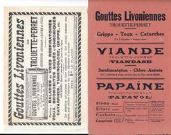 2 Buvards Anciens Produits Pharmaceutiques : LABORATOIRE E.TROUETTE-PERRET Paris -GOUTTES LIVONIENNES -PAPAÏNE-VIANDASE - Chemist's