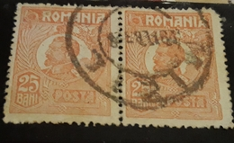ROMANIA King Ferdinand Romania 1920-22,  Pair X2, 25 Bani Redd, CANCEL MIZIL - Usado