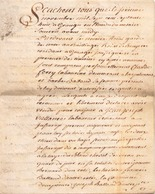 ACTE NOTARIE SUR PEAU DE 1778 DE LORRAINE ET BAR - Manuscripts