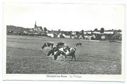 CPSM MONDORF LES BAINS, LE VILLAGE, TROUPEAU DE VACHES, LUXEMBOURG - Mondorf-les-Bains
