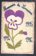 RARE CARTE BRODEE SUR  SOIE EN FRANCHISE MILITAIRE - SOUVENIR DE LORRAINE - CAMPAGNE; 1914 - 1915, 1916 De POILU 169 RI. - Guerra 1914-18