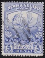 Newfoundland  .    SG   .     134        .       O      .  Gebruikt      .    /   .   Cancelled - Newfoundland