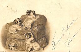 [DC11884] CPA - CANI CUCCIOLI SU POLTRONA - IN RILIEVO - Viaggiata 1901 - Old Postcard - Cani