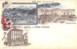 [DC11886] CPA - SVIZZERA - HOTEL DU PAON (PFAUEN) - PERFETTA - Non Viaggiata - Old Postcard - SZ Schwyz