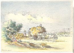 Cps Barre Dayez - Nice, La Moisson - BD 1471V  ( S.2830) - Illustrators & Photographers