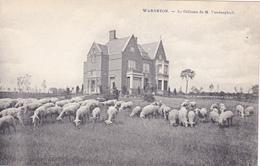 Cpa,WARNETON,commune Belge,comines ,région Wallone,le Chateau De Mr Vanderghult,ancien Propriétaire,avec Moutons,rare - België
