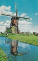 CARTOLINA - POSTCARD - PAESI BASSI - HOLLANDSE MOLEN - Nederland