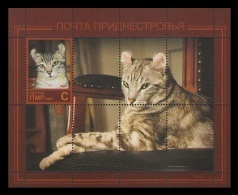 Moldova (Transnistria) 2013 No. 418 (Bl.44) Fauna. Cats MNH ** - Moldova