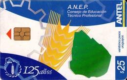 TARJETA TELEFONICA DE URUGUAY. 335a (A.N.E.P.) (244) - Uruguay