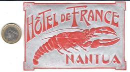 ETIQUETA DE HOTEL  -HÔTEL DE FRANCE  -MANTUA -ITALIA - Hotel Labels